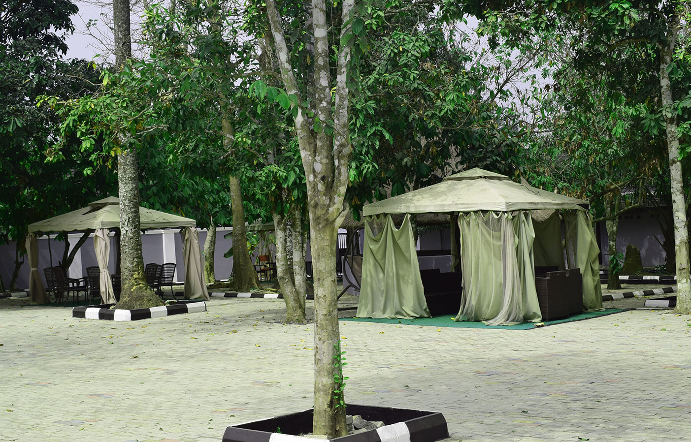 bush-bar-ilaji-hotel-and-resort